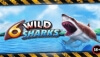 6 Wild Sharks Now Live at Royal Panda